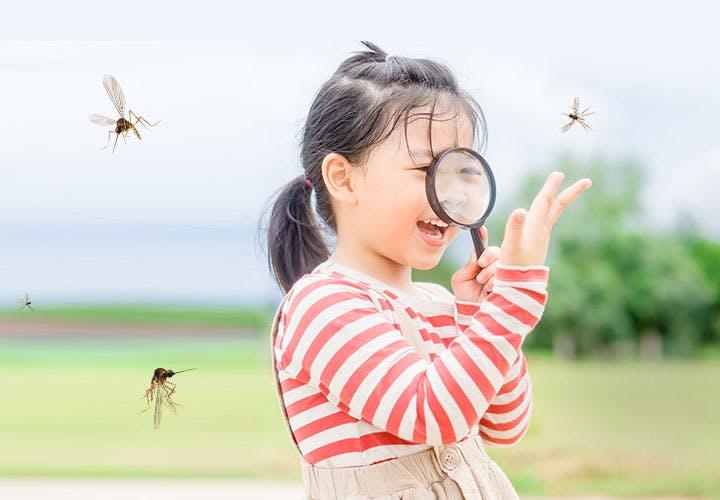 Dengue Fever Insurance