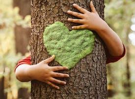 image d'un arbre enlacé par quelqu'un, un coeur en mousse est visible sur le tronc de l'arbre.