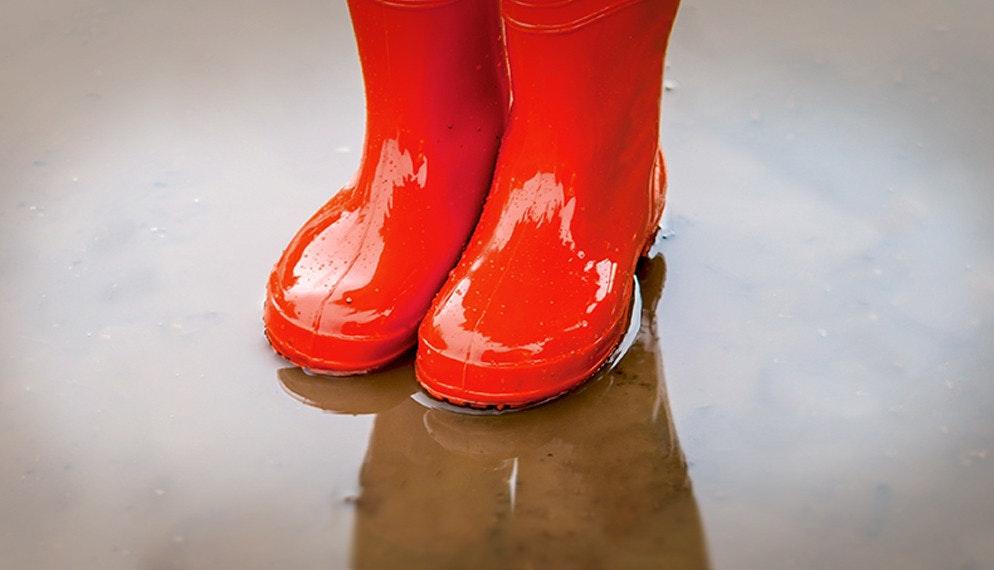 Chouette : il pleut !