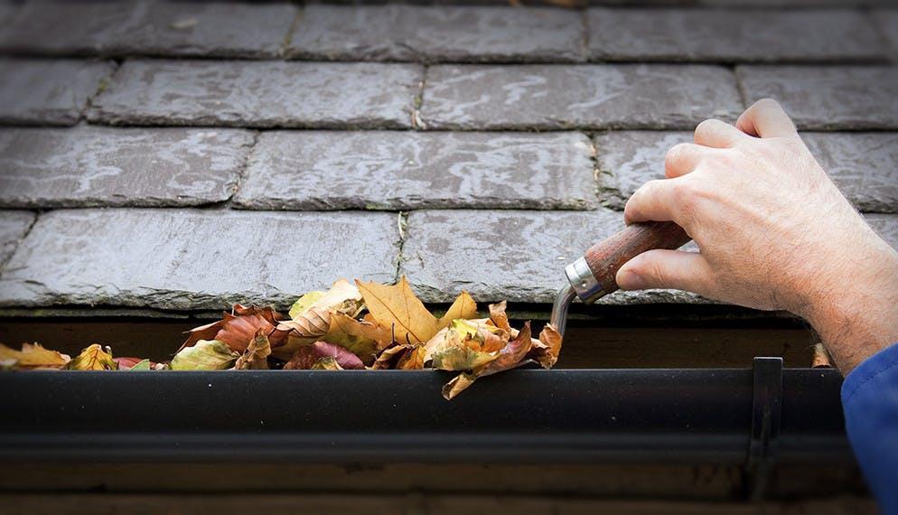 Comment préparer sa maison pour l'automne ?