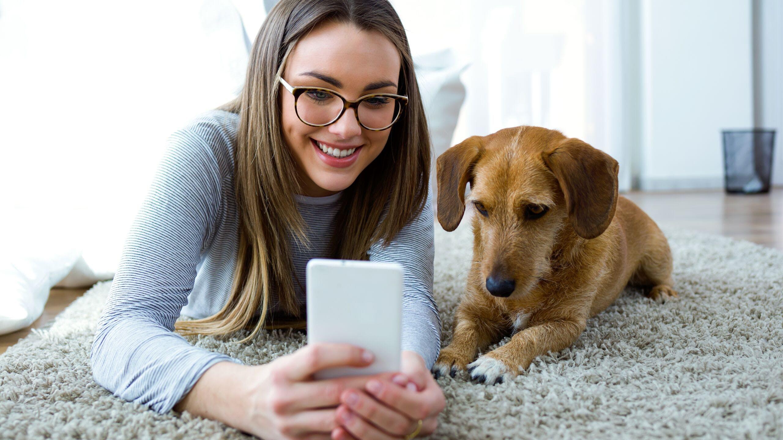 Axa luxembourg : fonctionnement assurance santé chien, pet insurance