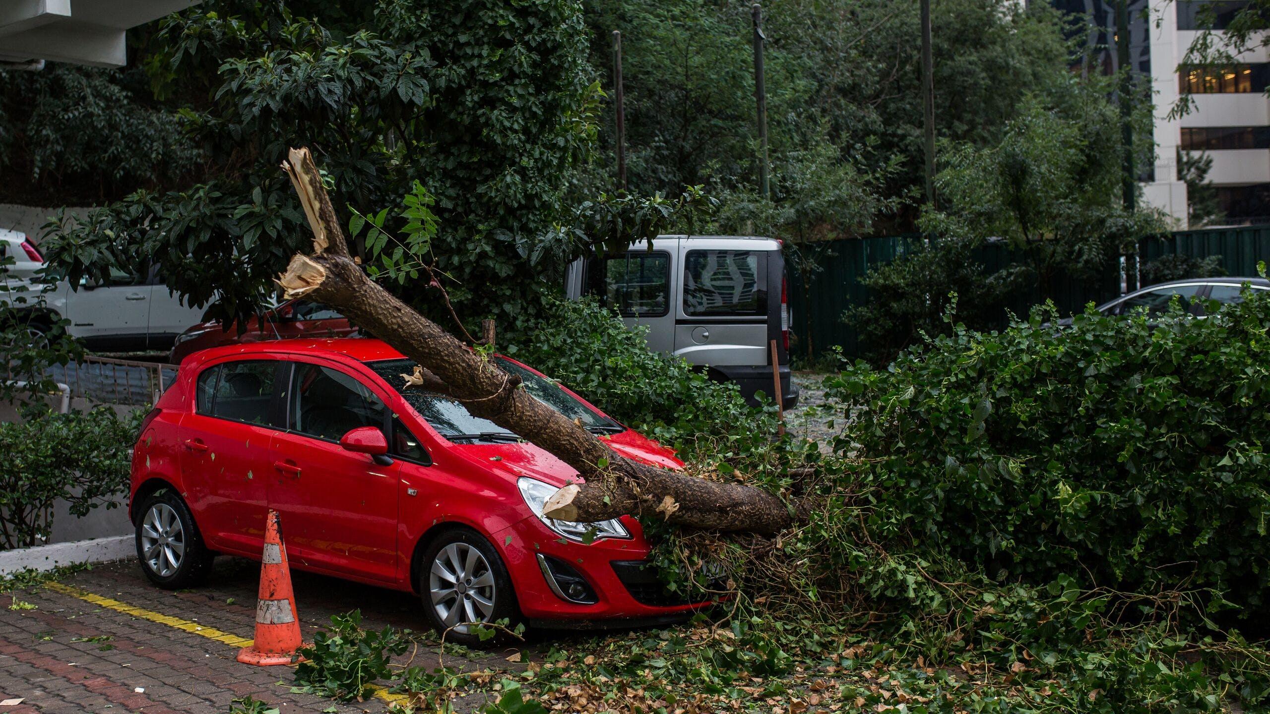AXA Luxembourg : conseils pour face face à une tempête